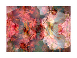 Roses Poetry I Photographic Print by Alaya Gadeh