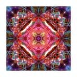 Mystic Earth Mandala I Photographic Print by Alaya Gadeh