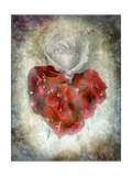 True Love Never Dies Photographic Print by Alaya Gadeh