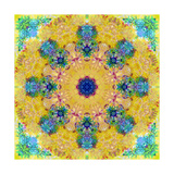 Yellow Blossom Mandala Photographic Print by Alaya Gadeh
