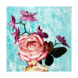 Rose With Orchid Photographic Print by Alaya Gadeh