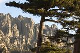 Aiguilles De Bavella Peaks, La Alta Rocca, Corsica, France Photographic Print by Walter Bibikow