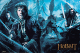 The Hobbit Desolation of Smaug - Mirkwood Obrazy