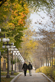 Autumn, Quebec City, Quebec, Canada Photographic Print by Cindy Miller Hopkins