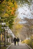 Autumn, Quebec City, Quebec, Canada Photographic Print by Cindy Miller Hopkins