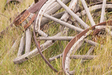 Old Wagon Wheels in Grass, Fort Steele, British Columbia, Canada Photographic Print by  Jaynes Gallery