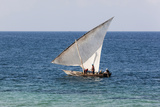 Dhow on Indian Ocean, Stone Town, Zanzibar, Tanzania Photographic Print by Alida Latham