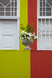 Colorful Houses, Bo-Kaap, Cape Town, South Africa Photographic Print by David Wall