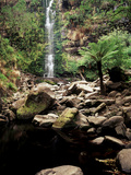 Erskine Falls, Lorne, Victoria, Australia Photographic Print by Walter Bibikow
