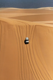 Car Descending a Sand Dune, Namib-Naukluft National Park, Namibia Photographic Print by David Wall