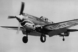 Curtiss P-40 Warhawk Archival Photo Poster Photo