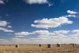 Farm Field, Sioux Falls, South Dakota, USA Photographic Print by Walter Bibikow