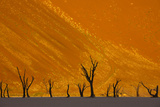 Namib-Naukluft National Park, Namibia Photographic Print by Art Wolfe