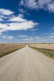 Country Road, Strasburg, North Dakota, USA Photographic Print by Walter Bibikow