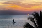 Sunset on Indian Ocean, Stone Town, Zanzibar, Tanzania Photographic Print by Alida Latham