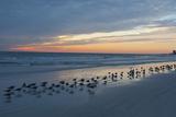 Cloudy Sunset on Crescent Beach, Siesta Key, Sarasota, Florida, USA Photographic Print by Bernard Friel
