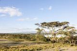 Lake Naivasha and Crescent Island Game Park, Naivasha, Kenya Fotografie-Druck von Martin Zwick