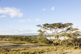 Lake Naivasha and Crescent Island Game Park, Naivasha, Kenya Photographic Print by Martin Zwick