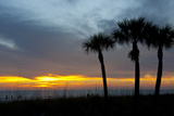 Sarasota, Sunset on the Crescent Beach, Siesta Key, Florida, USA Photographic Print by Bernard Friel