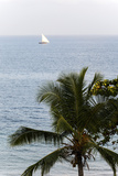 View of Indian Ocean and Dhow, Stone Town, Zanzibar, Tanzania Photographic Print by Alida Latham