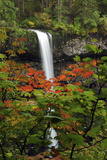 Autumn at South Falls, Silver Falls State Park, Oregon, USA Photographic Print by Michel Hersen