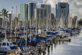 Docked Sailboats in Ala Wai Harbor, Honolulu, Hawaii, USA Photographic Print by Charles Crust