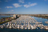 Yachts and Sailboats Moored in the Marina, San Diego, California, USA Photographic Print by Richard Duval
