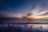 Sunset on Anna Marie Island on Florida's Gulf Coast Florida, USA Reproduction photographique par Richard Duval