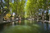 Tree-Lined Pool in Public Square of Cucuron, Provence, France Fotodruck von Brian Jannsen