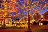 Christmas Décor and Lights, Opryland Hotel, Nashville, Tennessee, USA Photographic Print by Brian Jannsen