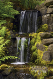 Waterfall, Crystal Springs Rhododendron Garden, Portland, Oregon, USA Photographic Print by Michel Hersen