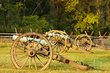 Cannons at Stones River National Battlefield, Tennessee, USA Photographic Print by Brian Jannsen