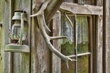 Antlers and Lantern Hanging on Rustic Home, Stehekin, Washington, USA Photographic Print by  Jaynes Gallery