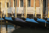 Gondolas Along the Grand Canal of Venice, Italy Photographic Print by David Noyes