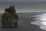 Basalt Column Rises from Black Sand Beach on Rainy Day, Vik, Iceland Photographic Print by  Jaynes Gallery