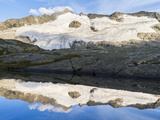 Peak of Mt Grossvenediger, Nationalpark Hohe Tauern, Salzburg, Austria Stampa fotografica di Martin Zwick