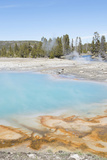 Biscuit Basin, Yellowstone National Park, Wyoming, USA Photographic Print by Gerry Reynolds
