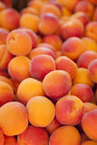 Fresh Apricots for Sale, Saint Remy-De-Provence, France Photographic Print by Brian Jannsen