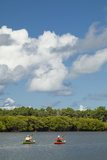 People Kayaking Through Protected Mangrove Areas in Yap, Micronesia Photographic Print by Michel Benoy Westmorland