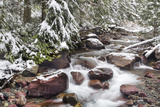 Early Snow in Avalanche Creek, Glacier National Park, Montana, USA Stampa fotografica di Chuck Haney