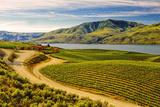 Benson Vineyards Estate Winery, Lake Chelan, Washington, USA Reproduction photographique par Richard Duval