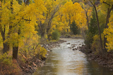 Crystal River, White River National Forest Colorado, USA Photographic Print by Charles Gurche