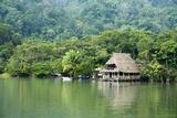 Rio Dulce Riverside View, Rio Dulce National Park, Guatemala Fotografie-Druck von Cindy Miller Hopkins