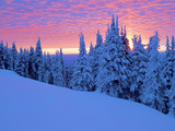 Winter Sunset, Mt Spokane State Park, Washington, USA Photographic Print by Charles Gurche