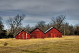 Three Barns, Kansas, USA Fotografie-Druck von Michael Scheufler