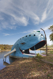The Blue Whale, Route 66 Roadside Attraction, Catoosa, Oklahoma, USA Photographic Print by Walter Bibikow