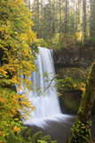 Lower South Falls, Silver Falls State Park, Oregon, USA Photographic Print by Jamie & Judy Wild