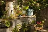 Garden Tub and Wash Basin at Chateau Roussan, France Fotografisk trykk av Brian Jannsen