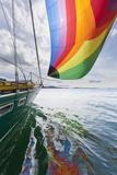 SV Nawalk with Spinnaker Flying, San Juan Islands, Washington, USA Fotografisk trykk av  Jaynes Gallery