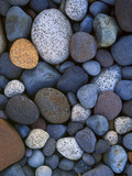Stones, Nisqually River, Mt Rainier National Park, Washington, USA Photographic Print by Charles Gurche